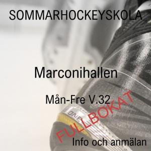 Sommarhockey fullbokad