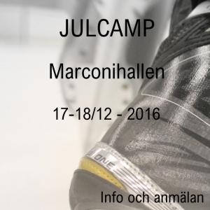 Julcamp 2016