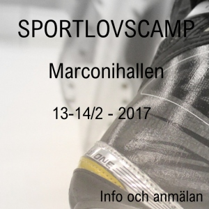 Sportlov 2017 ny